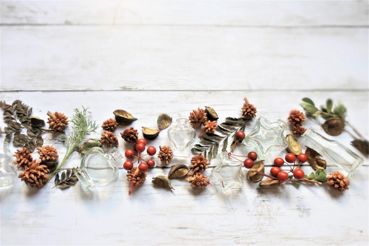 [マツコの知らない世界]干し芋の世界 美味しすぎる11品